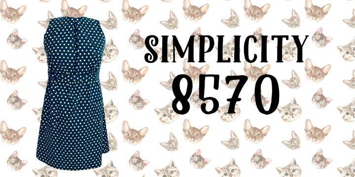 Simplicity 8570 ~ SimpleDress